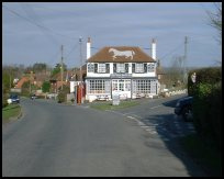 BodleStreetSussex - The White Horse